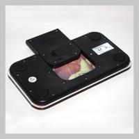 BL-19 Весы напольные компактные с цифровым дисплеем (до 100кг) 230x130x20мм