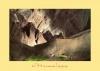 Постер природа 0809
